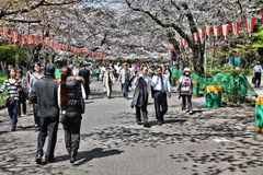Park in Tokyo Royalty Free Stock Photography