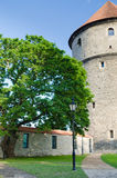 Park at towers of Tallinn Stock Image