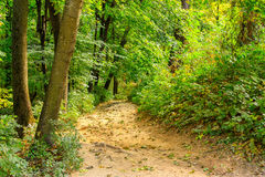 Park trail Royalty Free Stock Images