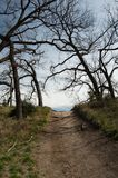 Park trail South Llano State Park, Texas. A trail passes under bare trees in early spring at South Llano River State Park in central Texas Royalty Free Stock Photography