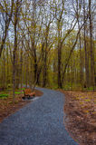 Park trail in the spring Royalty Free Stock Image