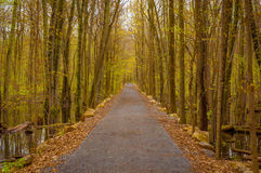 Park trail in the spring Stock Image