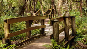Park trail wooden bridges. Moccasin Lake Nature Park, Clearwater, FL, wooden bridges and pathways park trail Royalty Free Stock Images