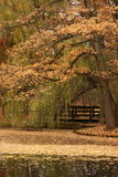 Park Royalty Free Stock Photos