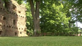Park with tree and stone wall of the castle. Slider shot. stock video footage