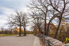 Park Trees. These are trees in Minnehaha Park in Minneapolis, Minnesota. This was taken during late fall Stock Image