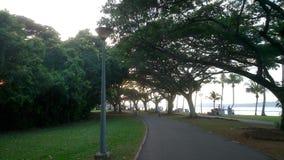 Park. Trees, Pathway, Lamplight and Greenery Stock Photos