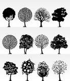 Park trees2 Stock Photos