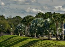 Park with tropical plants.Clouds on a sunny day. The facade of the house is visible in the background stock photos