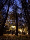 Park in Tsaritsino at night Stock Image