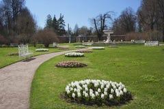 Park in Tsarskoye Selo Stock Photo