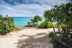 Park of Tulum and sea Royalty Free Stock Images