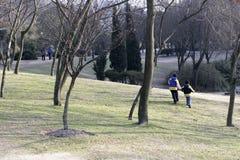 Park und Kinder stockfotografie