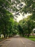 Park und Radweg Lizenzfreie Stockfotografie