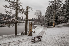 Park under snow by lake in winter time Stock Photo