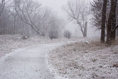 Park unter einem ersten Schnee Stockfotografie
