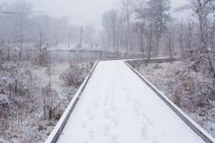 Park unter einem ersten Schnee Stockfotos