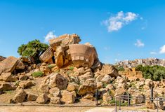 Park of the Valley of the Temples in Agrigento, Sicily. Italy royalty free stock photo