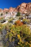 Park van de Staat van Fremont het Indische - Utah Stock Foto