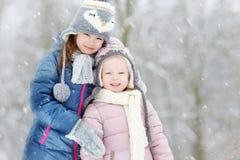 Park van de twee het grappige aanbiddelijke kleine zusterswinter Royalty-vrije Stock Foto