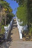 Park van de Zuidelijke installaties Royalty-vrije Stock Afbeelding