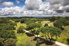 Park van Madrid Royalty-vrije Stock Foto
