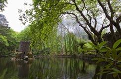 Park van Palacio Nacional DE Pena in Sintra stock foto