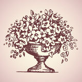 Park vase of flowers. Vector drawing Stock Photos