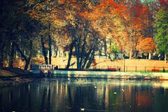 Park. View of autumn in the park Royalty Free Stock Photos