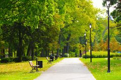 Park. View of the promenade in the park Royalty Free Stock Photography