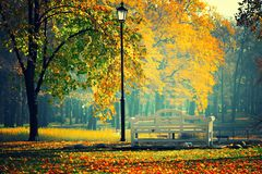 Park. View on a small bench in the park Royalty Free Stock Photography