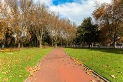 Park stock photography