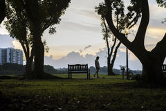 A park visitor stroll slowly with head looking down at Bedok Reservoir park during evening sunset. Royalty Free Stock Photography