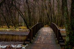 Park Vrelo Bosne. View of the beautiful park Vrelo Bosne in Bosnia and Herzegovina stock photos