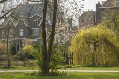 Park w Amsterdam Holandie Zdjęcia Stock