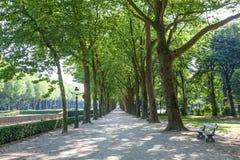 Park w Bruksela, Belgia Obraz Royalty Free
