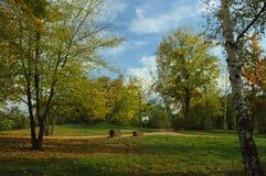 Park w jesieni Obrazy Royalty Free