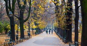 Park w Krakow w Polska Obrazy Royalty Free