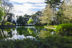 Park wśrodku Palacio robi Cristal, Porto, Portugalia Zdjęcie Royalty Free