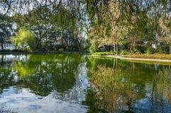 Park wśrodku Palacio robi Cristal, Porto, Portugalia Zdjęcia Royalty Free