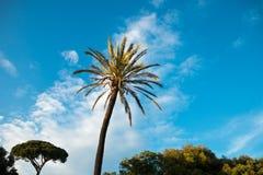 park w Rom Italia Obrazy Royalty Free