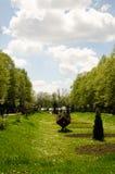 Park w wiośnie Zdjęcia Royalty Free