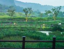 Park w wsi z pięknym ulistnieniem Zdjęcie Stock
