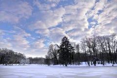 Park w zima. Zamarznięty staw. Obrazy Stock