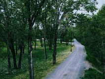Park walk. A walk path through a park Stock Photo