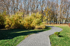 Park walking path Royalty Free Stock Photography