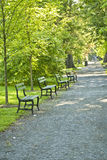 Park Walkway Royalty Free Stock Photo