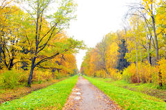 Park and walkway at autumn. Stock Images