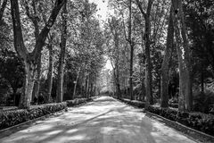Park walkway in Seville Royalty Free Stock Images