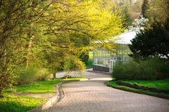 Park walkway in summer botanical garden Royalty Free Stock Image